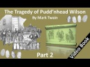Part 2 - The Tragedy of Pudd'nhead Wilson Audiobook by Mark Twain (Chs 13 - 24)