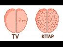 Beyin Gücünüzü Artıracak 10 Öneri