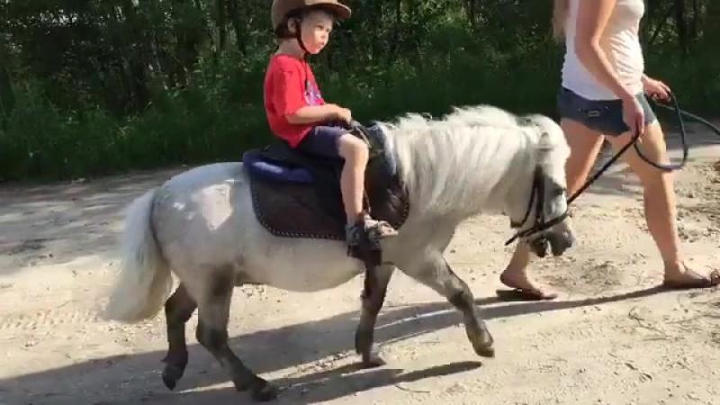 Пони по имени Кефирчик (ВКС-Кантри)