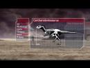 Факты о Динозавры из Планета Динозавров Серия Затерянный мир!