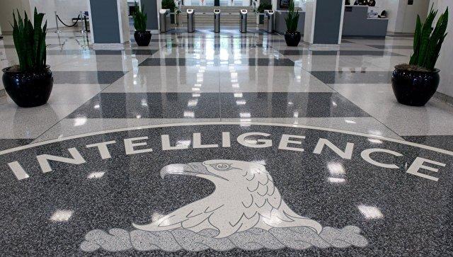 Эксперт объяснил отказ ЦРУ комментировать помощь России в предотвращении теракта в Петербурге