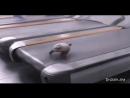 Video-6846abdcc020ee5007506e5c3422185d-V.mp4
