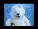 видео - письмо от Мишки олимпийского