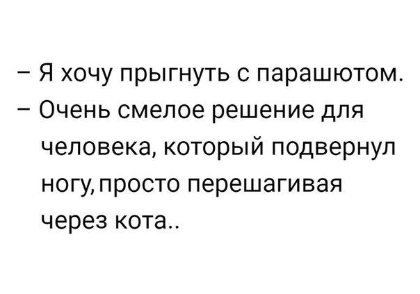 Фото №456240518 со страницы Софьи Никишовой