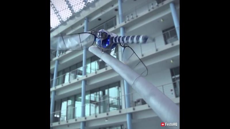 Эти роботы, базирующиеся на животных, могут заставить думать всех, что они настоящие...