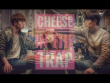 Cheese in the trap 40 градусов