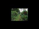 🔊 Craig Pruess Feat. Ananda – Lalitha Ashtotram (Audio Junkies Sahar Z Remix)