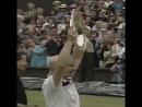 Remembering Jana Novotna's Wimbledon journey... / tennis insight