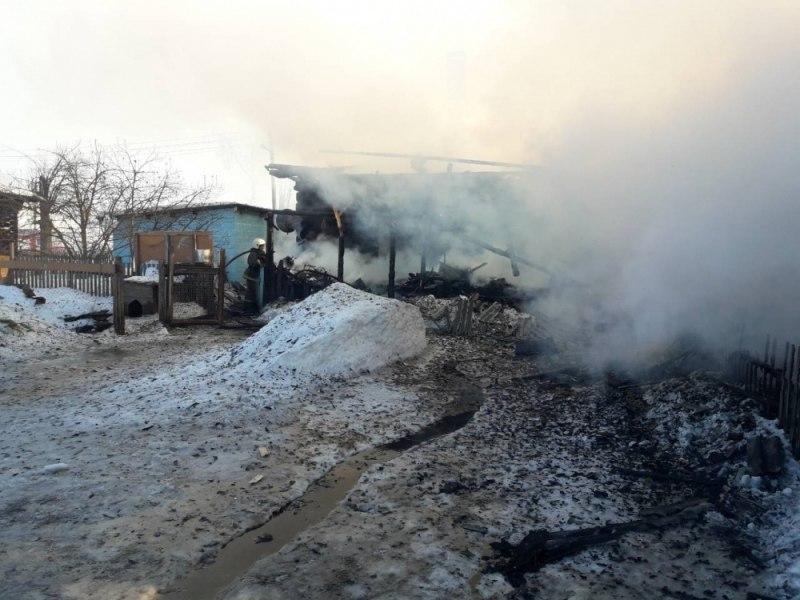 Жители деревни в Марий Эл, в которой пожар унес жизни двух детей: «Они бегали без присмотра, похожие на Маугли»