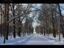 Сестрорецк: парк Дубки