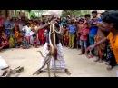 Индийские Змеи,Потеряли Контроль над Всеми Змеями, увидете что Случится Дальше