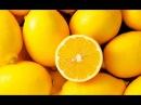 О самом главном: Плесень в доме, чистка печени, цитокинотерапия, польза лимона, худеем правильно