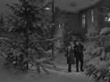 Николай Погодин и Люсьена Овчинникова - Старый клён