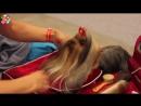 Мир собак • Кавалер кинг чарльз спаниель, Испанский Мастиф и Бельгийская Овчарка Грюнендаль — выставка животных Зоошоу