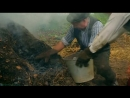 BBC Эдвардианская ферма 12 Август Познавательный история исследования 2010