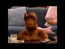 Alf Quote Season 2 Episode 5_ Про еду