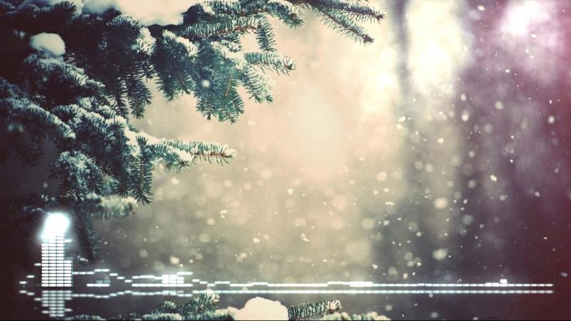 снег ветви лес snow branches forest  № 442793  скачать
