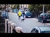 Бродячий пёс спас девушку от грабителя