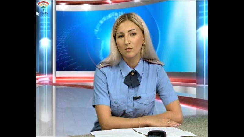 Интервью с Татьяной Николаевой - дознавателем отдела надзорной деятельности и профилактической работы Тосненского района