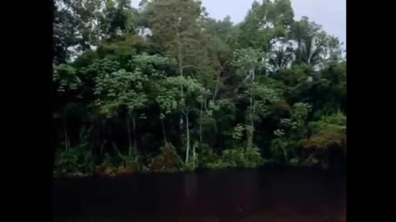 Дмитрий Маликов. Музыка из фильма 'И все-таки я люблю'..mp4