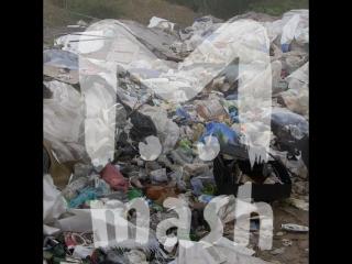 Многодетным семьям в Пермском крае выделили земли на свалке