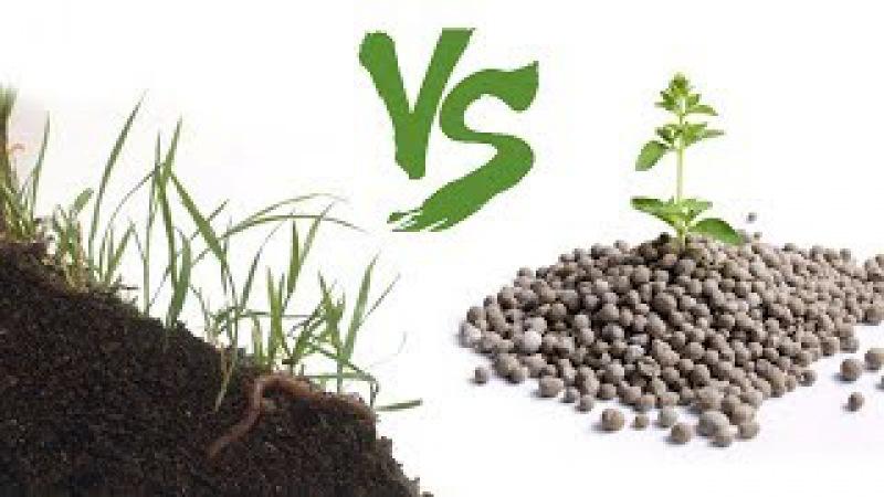 ОРГАНИКА против МИНЕРАЛКИ \\ Какие удобрения лучше? Органические или минеральны ...