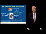 Evolving Pathophysiology of Heart Failure
