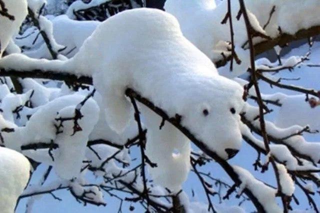 На Марий Эл надвигаются сильные морозы