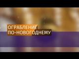 Злоумышленники в костюмах собак спилили несколько елок в Петербурге