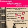 Школа музыки  Palisander    г.Сыктывкар