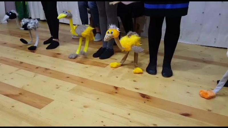 страусята-веселые ребята