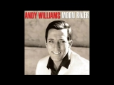 Andy Williams - I Like Your Kind of Love