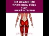 Упражнения для ягодиц, бедер и нижней части спины.