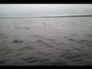 2013-08-10 21.02 Карелия