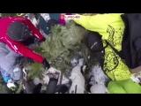 Момент падения сосны на сноубордистку на горнолыжном курорте «Роза хутор» на Красной поляне