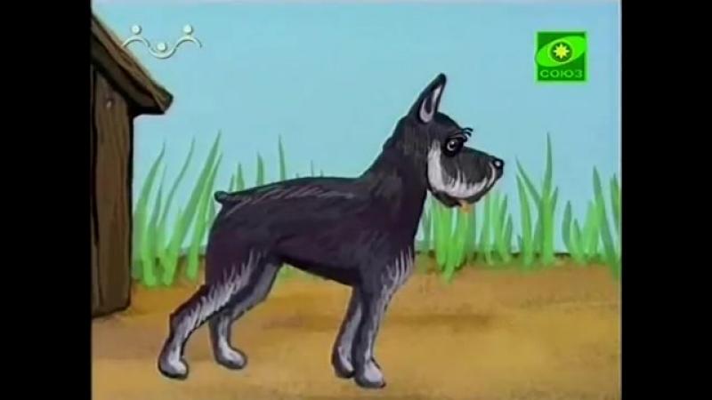 Выставка собак (2 путешествие) (из цикла