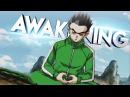 Dragon Ball Z AMV Awakening MEP