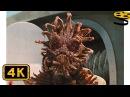 Ну давай Арестуй меня! . Смерть Бориса-Животного | Люди в черном 3 | 4K ULTRA HD