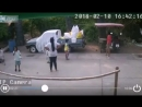 Бревно упало в миллиметрах от ребёнка в Тайланде Видео