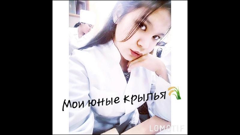 Lomotif_15-Дек-2017-23191141.mp4