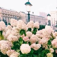 Аня Иванова, Москва, Россия