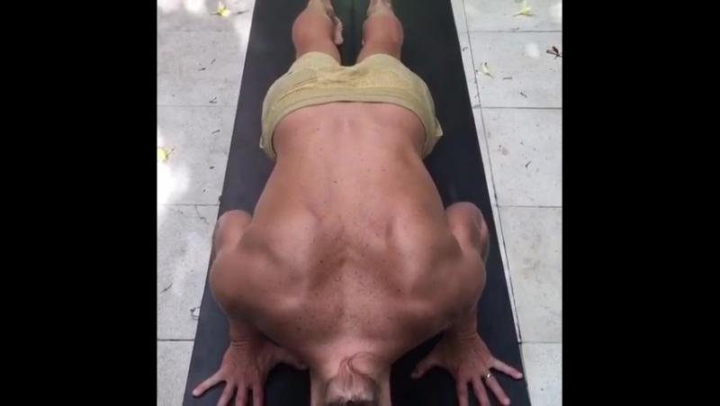 Лопаточно-плечевой ритм и положение шеи в чатуранга дандасане.