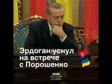 Эрдоган уснул на встрече с Порошенко