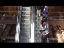 Райкина лестница