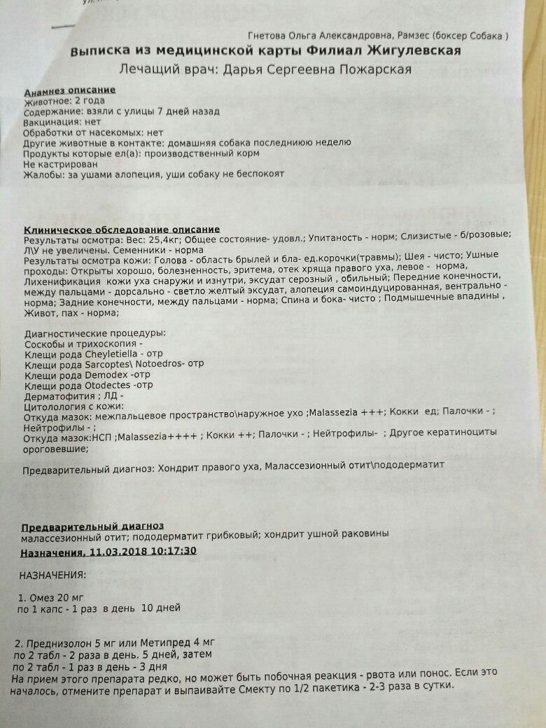 Москва, Роналдо , кобель, 04.03.2016 - Страница 2 GDi8L47ztIc