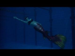 Русалка в бассейне