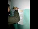 Pawluan steals the mailbox