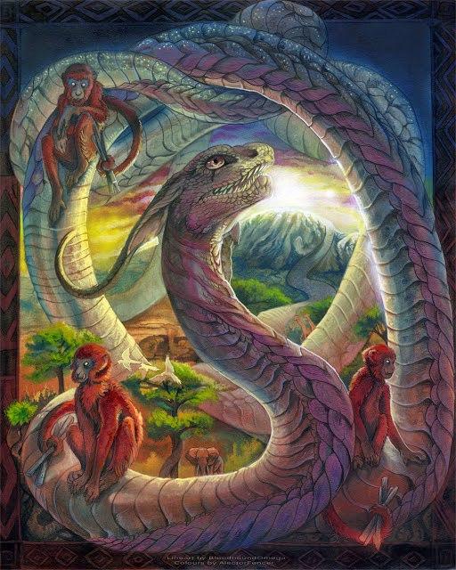 Image result for rainbow serpent aido wedo