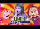 Маша и Медведь Цирк да и только Свинка Пеппа на Русском Мультик Анимация Смешное...