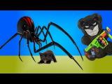 ЖЕЛЕЙНЫЙ МЕДВЕ BATMAN & GIANT SPIDER: NERF WAR Spider Apocalypse:НЕРФ ВОЙНА Гигантский паук Атакует https://www.youtube.com/watch?v=LsBIDleSm_Y
